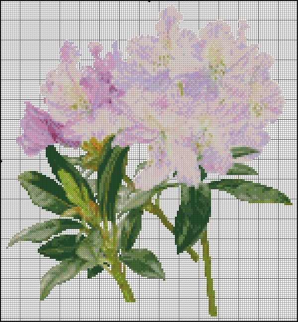 rhododendron | vyšívání a jiné | Pinterest