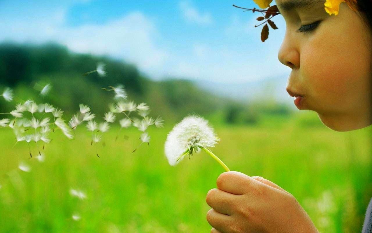La Planta Que Es Muchisimo Mas Eficaz Que La Quimioterapia