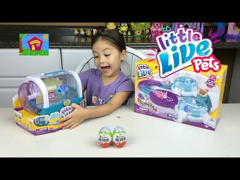 Lil Turtle And Lil Frog Really Swim Little Live Pets Toy Review Surprise Egg Video For Kids Youtube Little Live Pets Pet Mice Pets