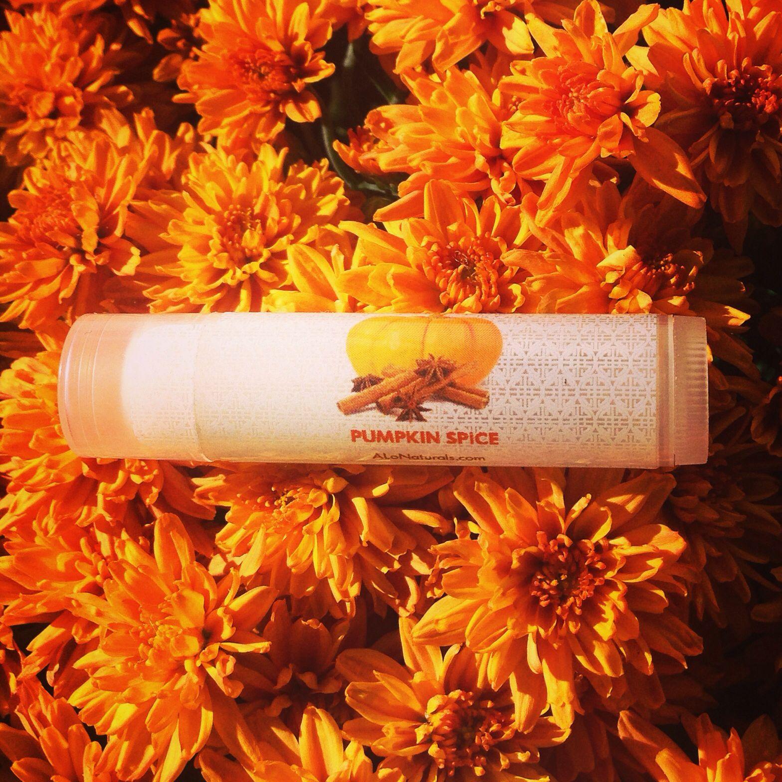 ALo Naturals holiday flavor lip balm!  Pumpkin Spice!!  Order at ALoNaturals.com