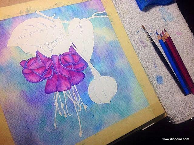 Watercolor Pencil Fuchsia Step By Step Watercolor Pencils