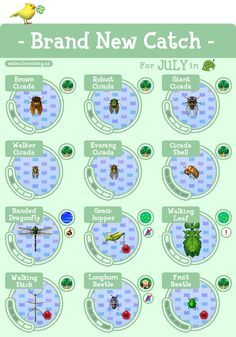 ACNL Brand New Catch July (With images) Animal crossing