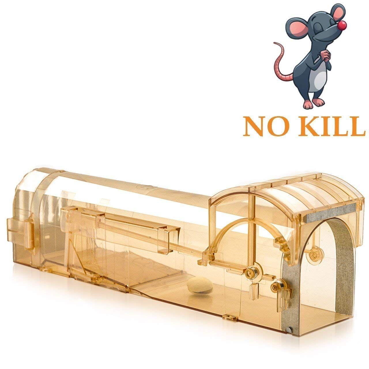 Auto diy mouse trap mouse traps