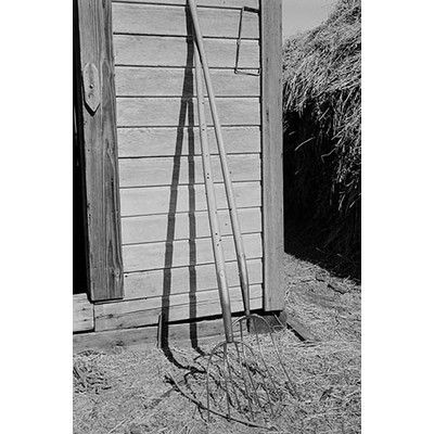"""Buyenlarge 'Farming Tools Still Life' by Dorothea Lange Photographic Print Size: 66"""" H x 44"""" W"""