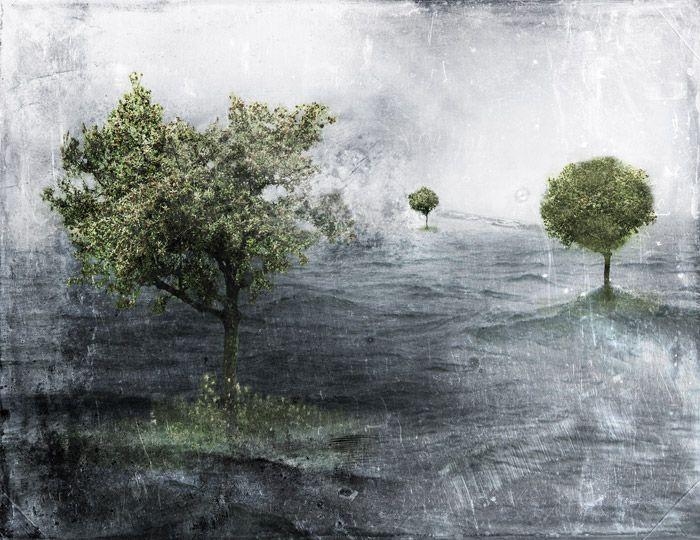 Päivi Hintsanen: Archipelago, 2009