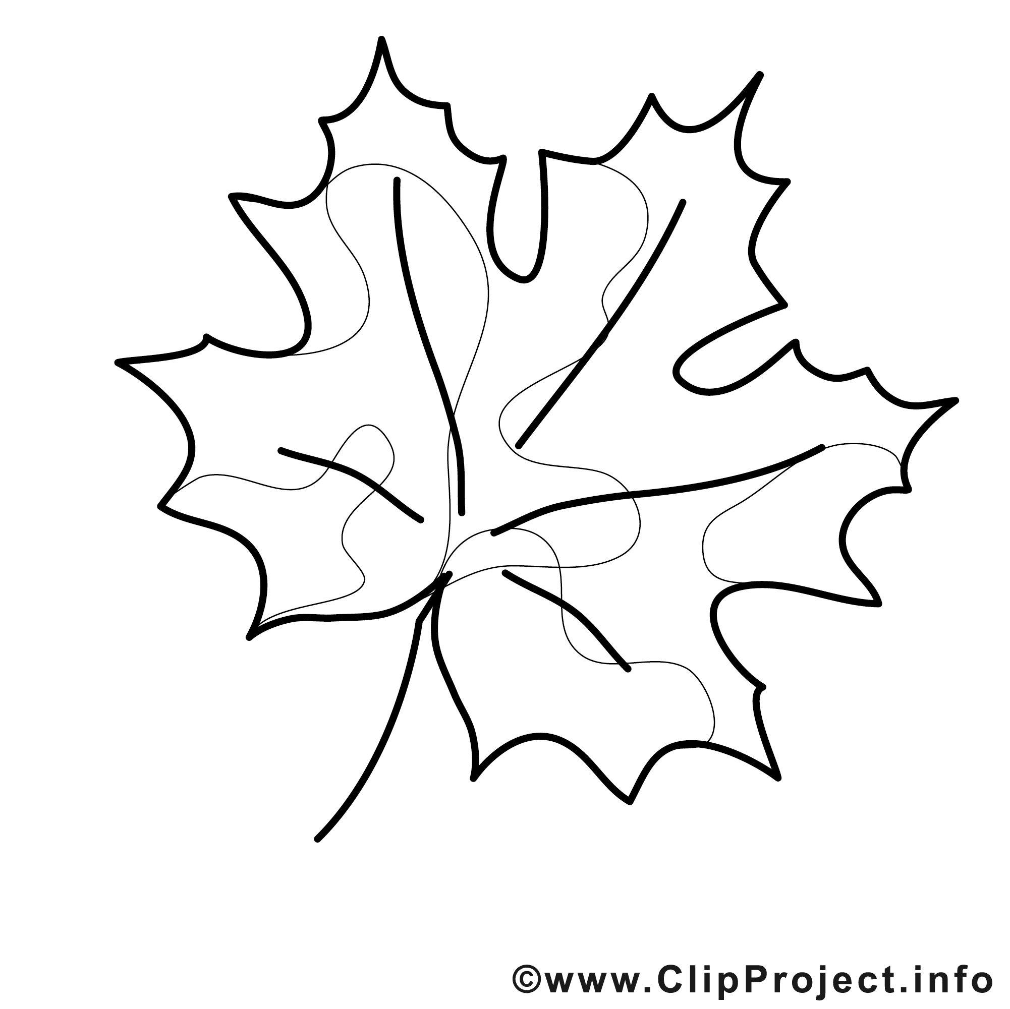 Malvorlage Herbstblatt