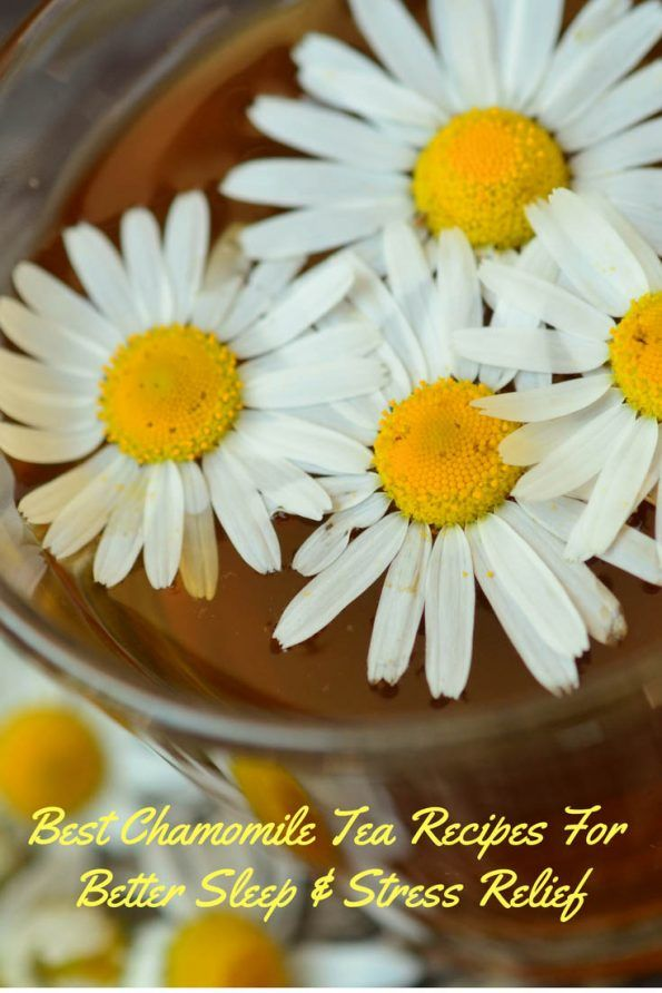 Best Chamomile Tea Recipes For Better Sleep - Make chamomile tea taste better #sleeprecipes #tearecipes #chamomiletearecipes #chamomiletea #chamomile #insomnia #insomniarecipes