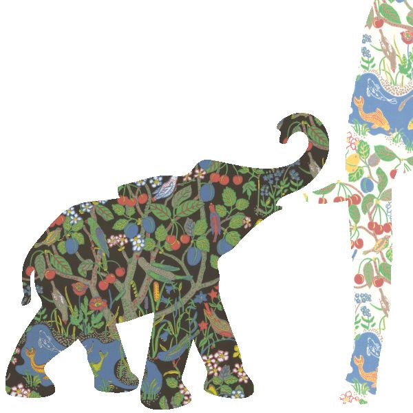 elephant baby wallpaper