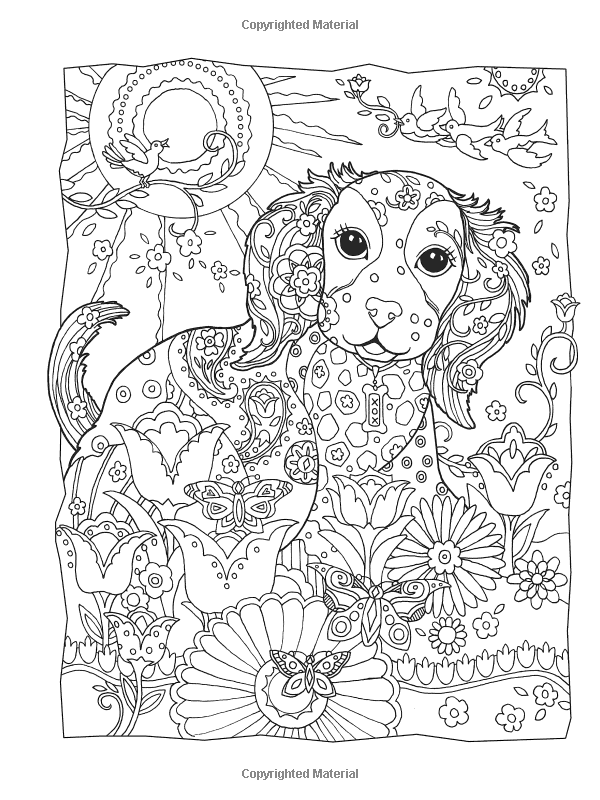 Amazon Creative Haven Dazzling Dogs Coloring Book Adult 0800759803828 Marjorie Sarnat Books