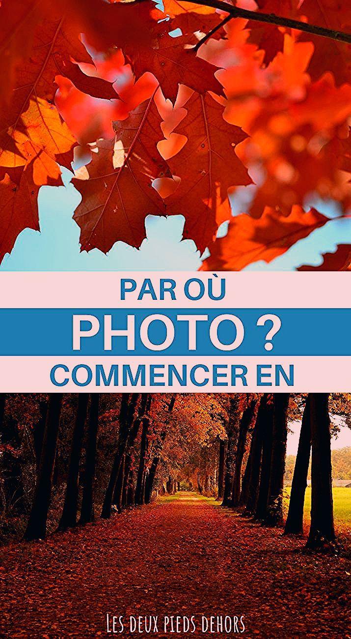 Photo of Les bases de la photographie – Apprendre et comprendre la photo