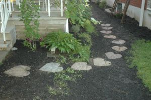diy leaf stepping stones..saw this on facebook and wondering if I can do with philodendron since I don't have rhubarb