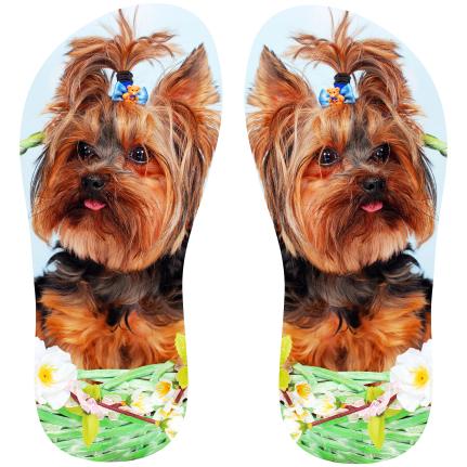 713a1cb93 Transfer sublimático para chinelo Animais 001322 em 2019 | Yorkie | Dogs