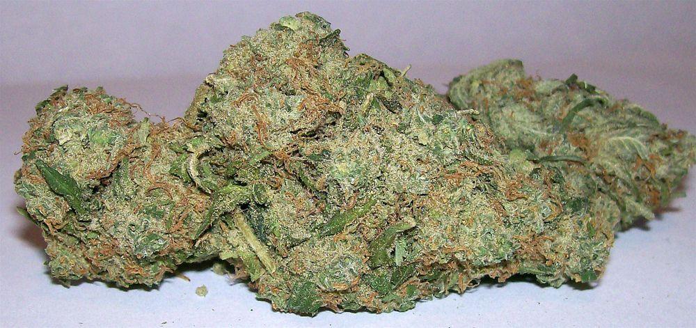 density  ( marijuana cannabis )