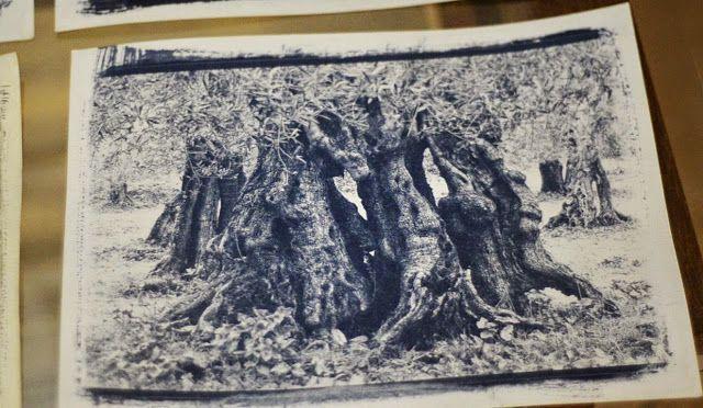 """SCT photo: Mostra """"Blu di Tuscia"""" a Bolsena"""