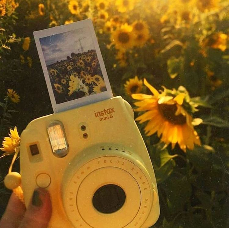 The yellow aesthetic  #yellowaesthetic Yellow Polaroid #yellowaestheticvintage