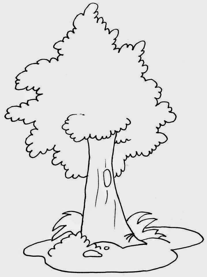 Atividades E Desenhos Para Imprimir Dia Da Arvore 21 De Setembro