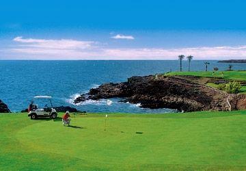 26+ Amarilla golf club ideas