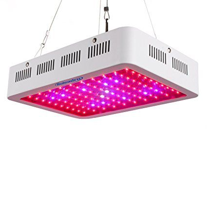 Roleadro DEL Grow light Galaxyhydro Series 1000 W Indoor Plant Grow Lights complet