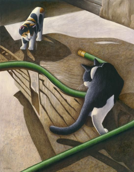 Cats and Garden Hose - Carol Wilson