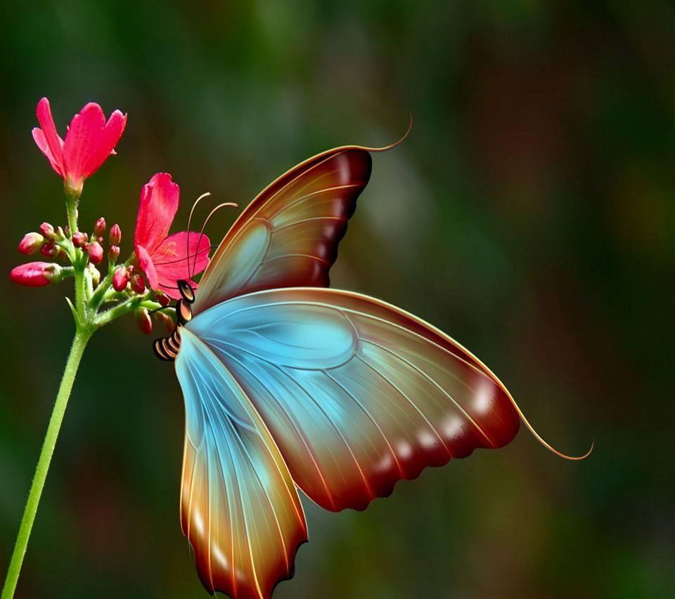 O segredo é não correr atrás das borboletas… É cuidar do jardim para que elas venham até você. No final das contas, você vai achar, não quem você estava procurando, mas quem estava procurando por você! Mario Quintana