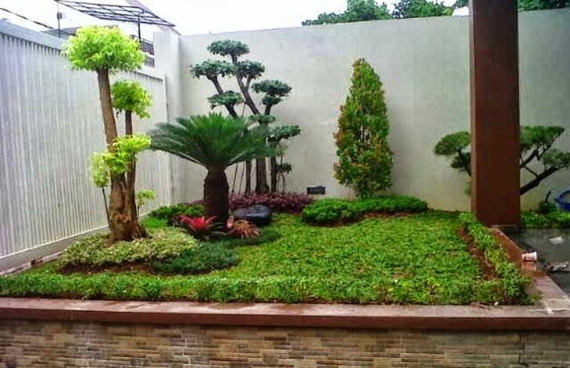 Foto Taman Sederhana Modern Minimalis Ide Berkebun Kebun Kecil Desain Lanskap
