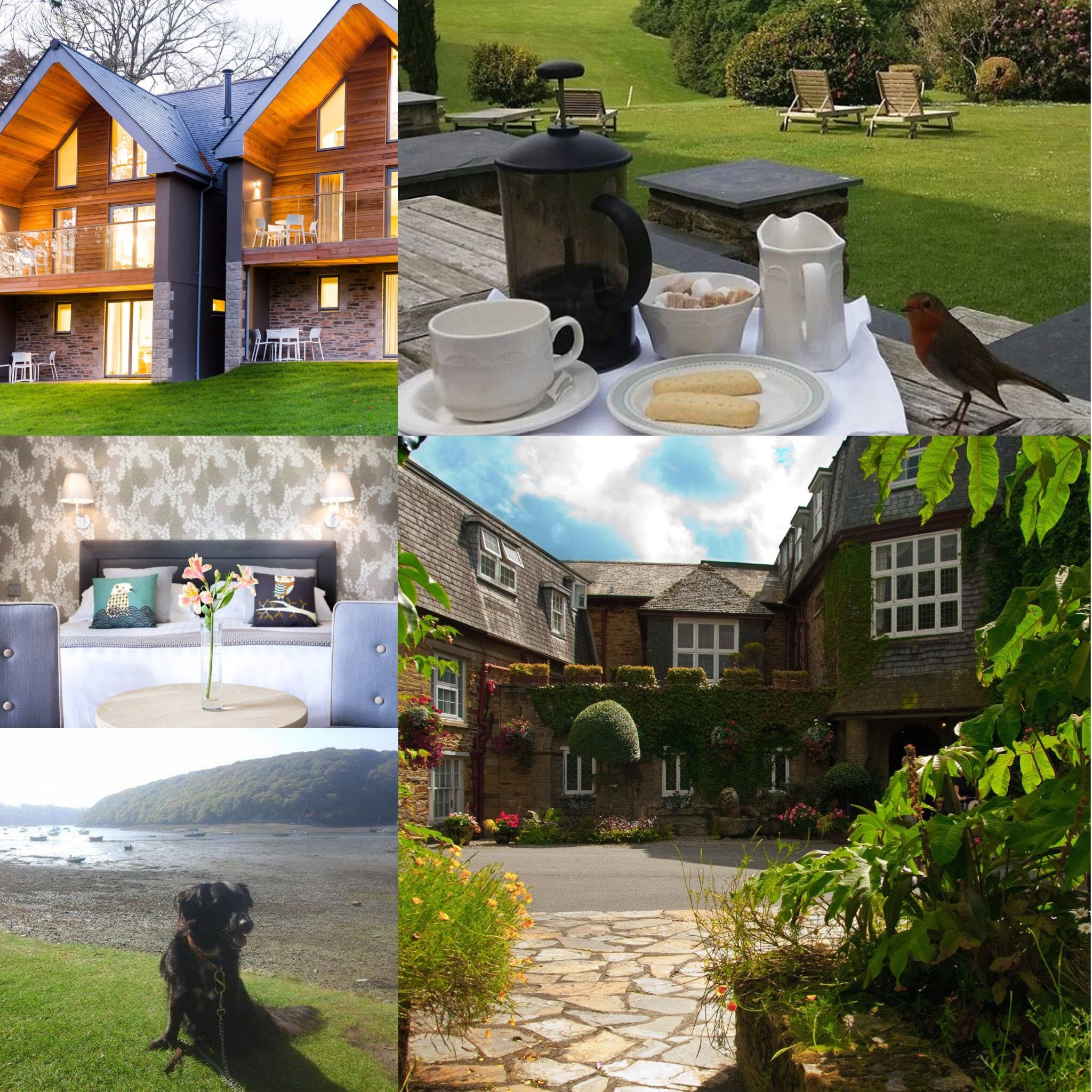 Budock Vean Hotel And Spa Offers Luxury Dog Friendly Accommodation In Beautiful Cornwall Https