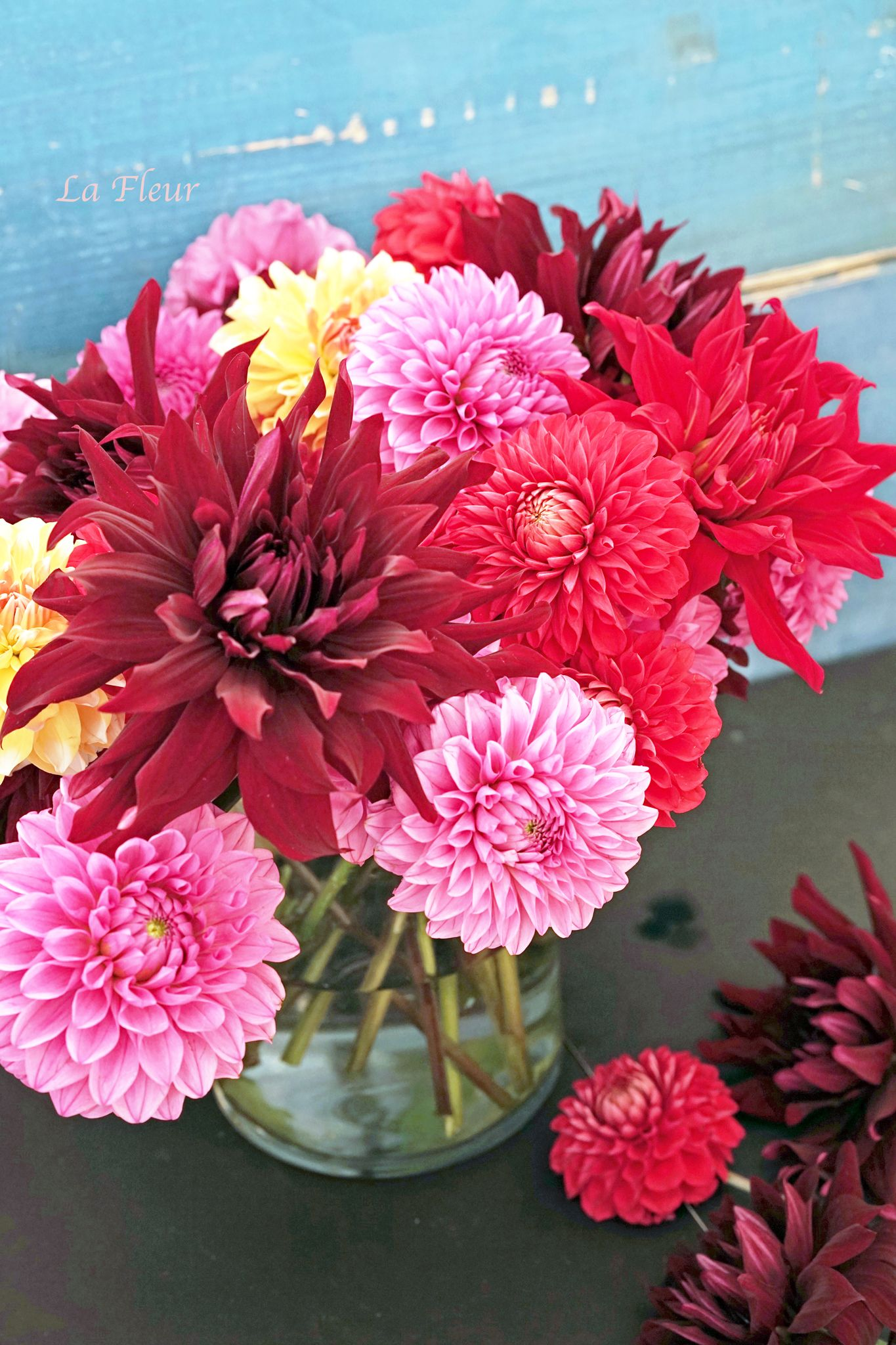 Dahlia flower pinterest dahlia and flower arrangements flower arrangements dahlia izmirmasajfo