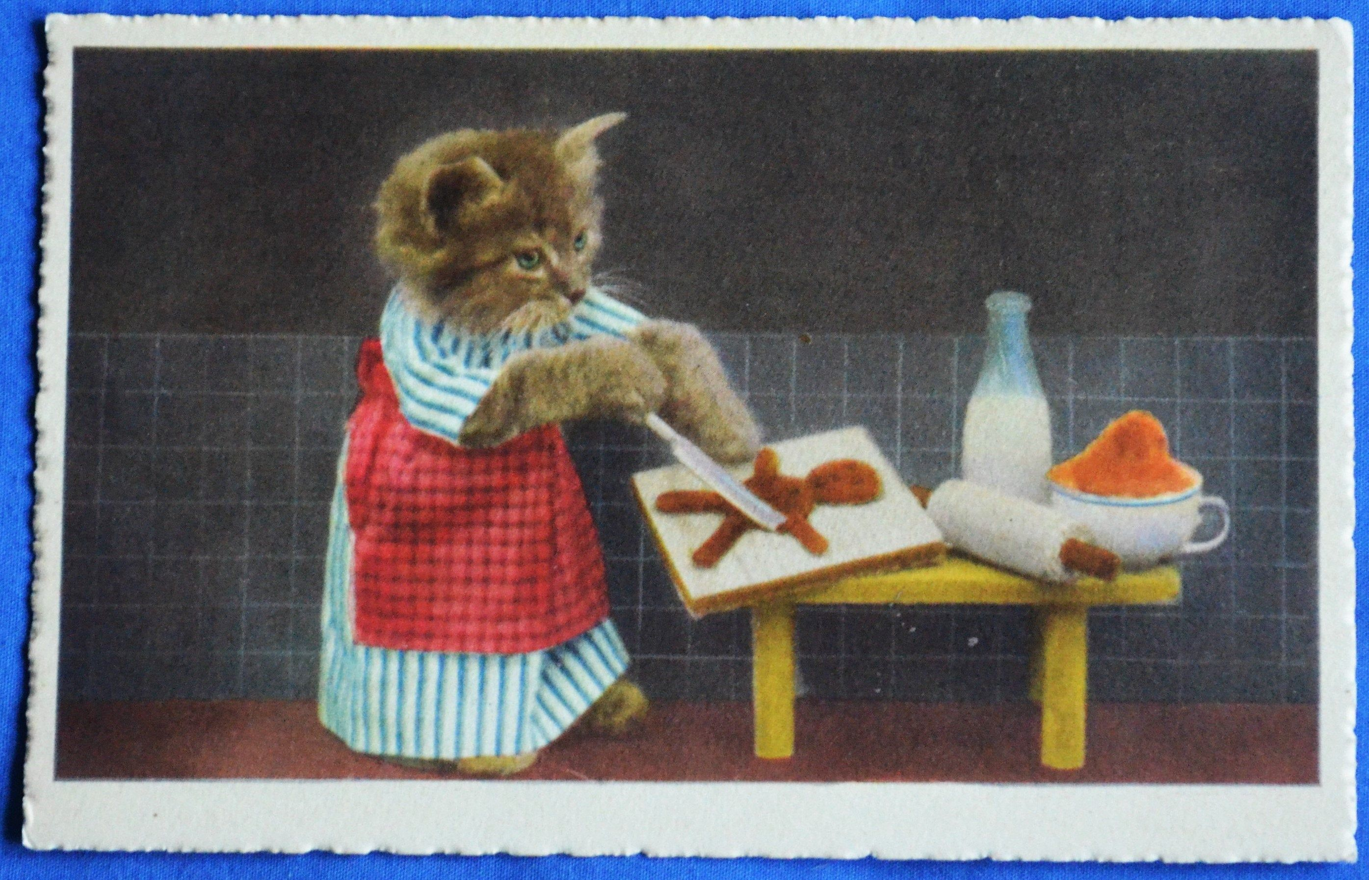 Comic Dressed Gray Cat Kitten Apron Making Gingerbread Men Postcard With Images Cats And Kittens Grey Cats Kittens