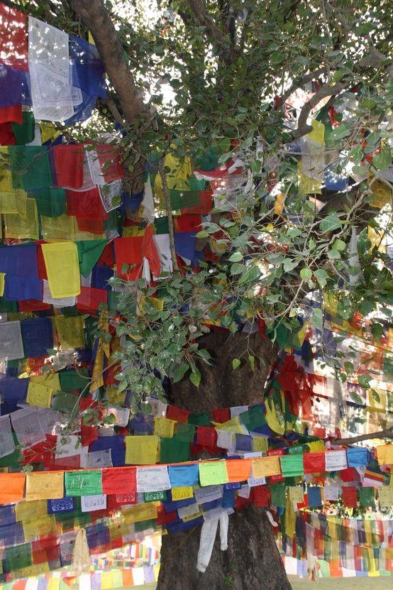"""Nepal - """"Drapeaux"""" de prières"""