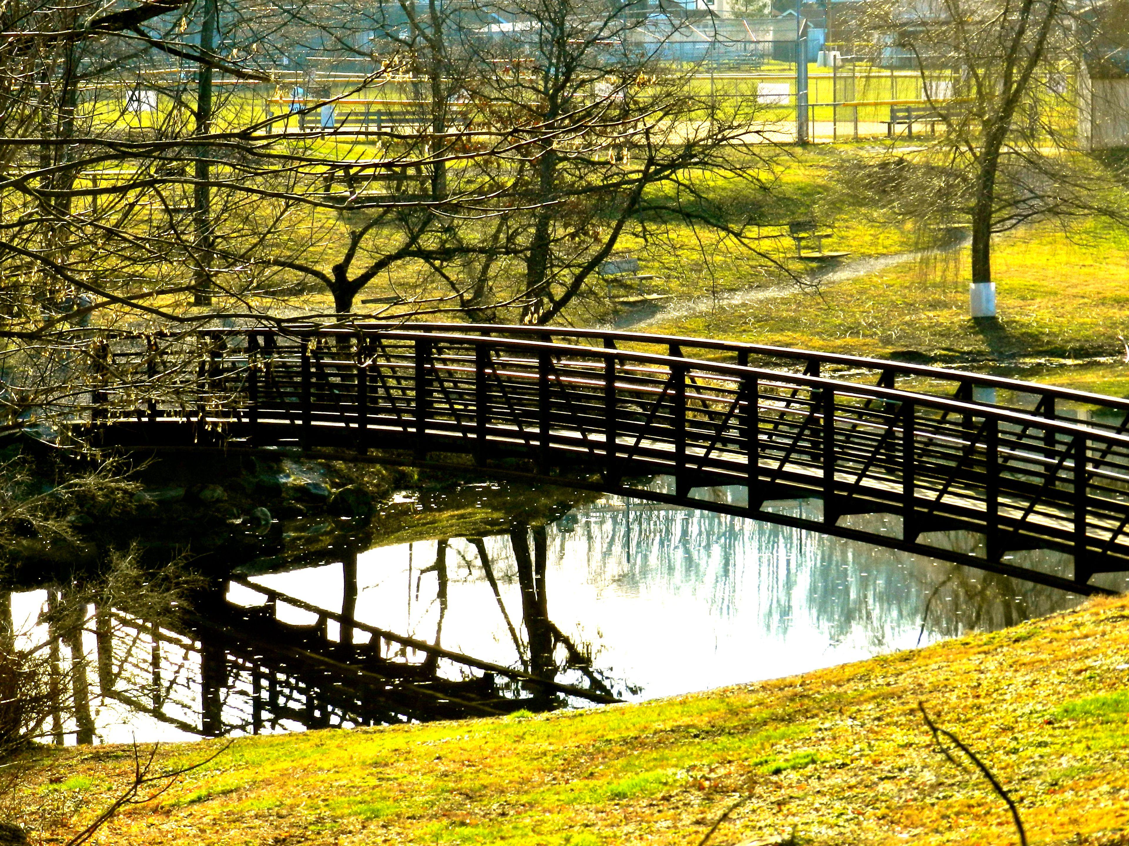 Franklin Pond, Franklin, NJ   Favorite Places & Spaces   Sussex