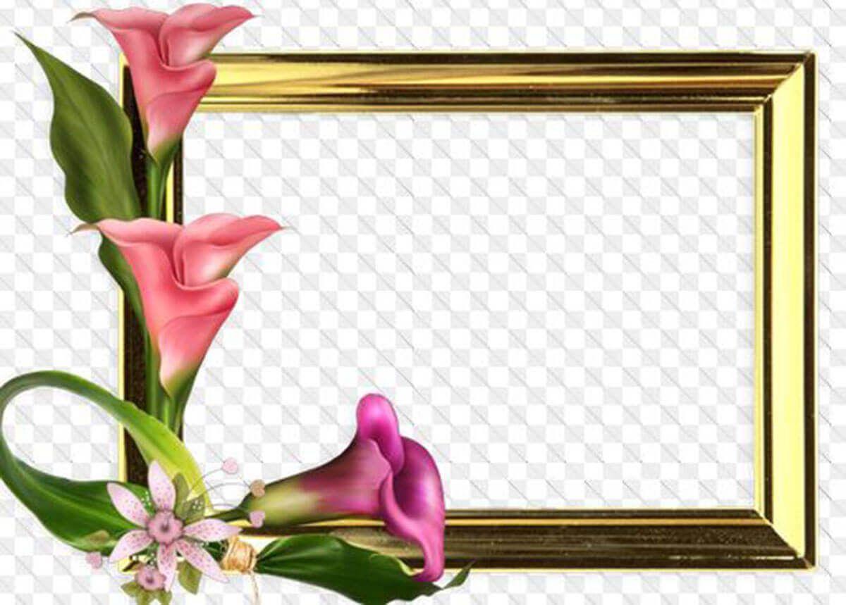 marco para fotos flores   Sueños   Pinterest