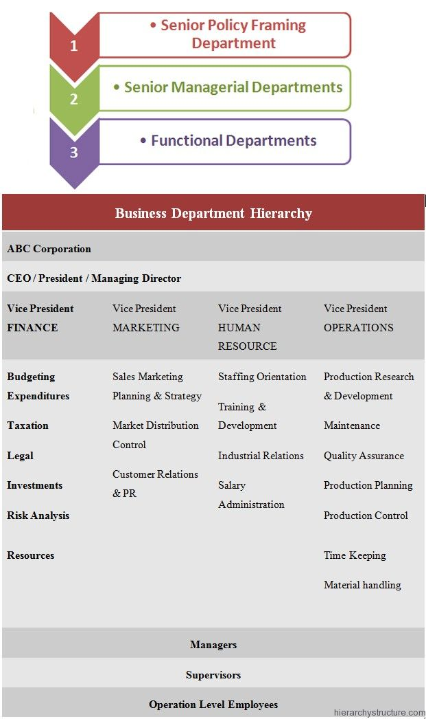Business Department Hierarchy Hierarchy, Sales and