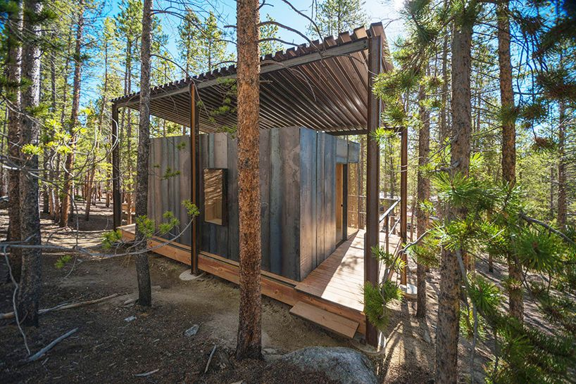 colorado building workshop constructs 14 micro cabins within a lodgepole pine forest