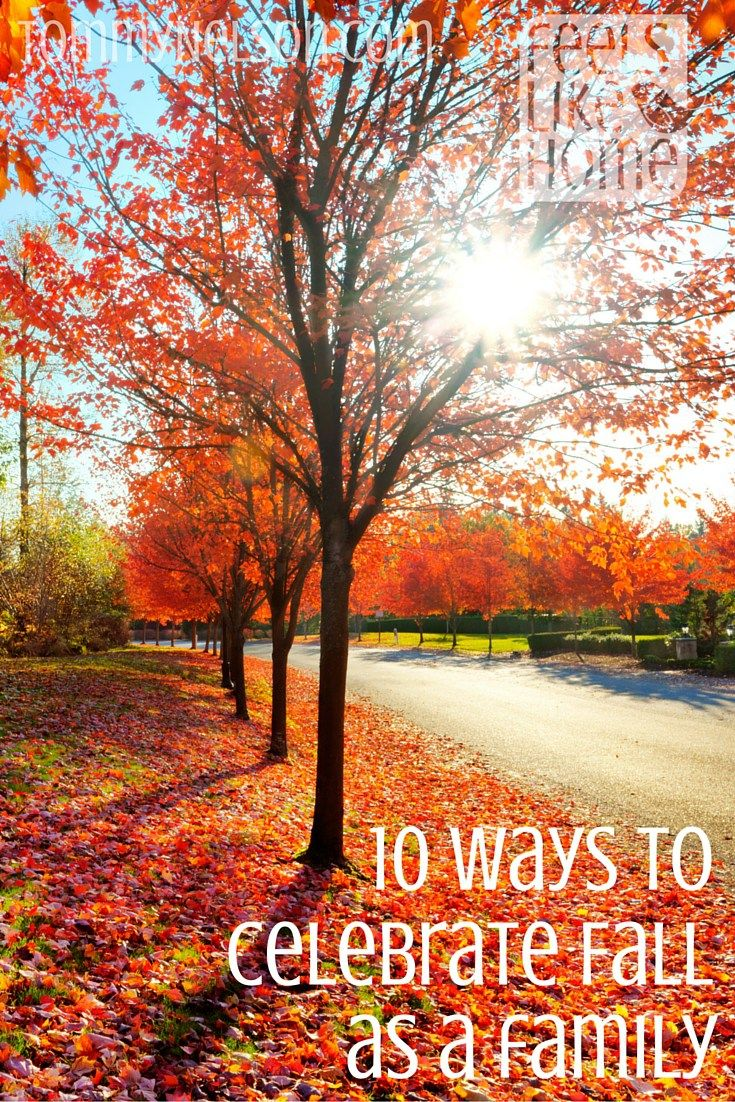 Watch Ways to Explore Fall Nature with Kids In Hindi video
