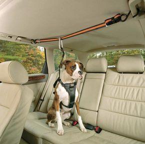 Truques incríveis e gadgets geniais para deixar qualquer fã de carro ainda mais apaixonado.