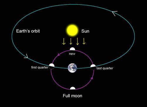 Full Moon Weirdness Earth Sun And Moon Full Moon Moon