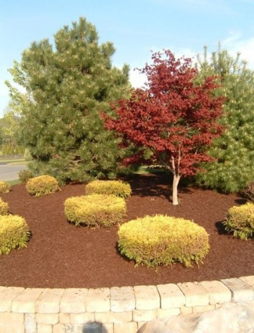 To gardeners, whether or not to use mulch is rarely the question. How to choose the best garden mulch for your specific needs, however, can be.       Using quality mulch in your garden or landscape is one of the most common ways to tidy up flower...