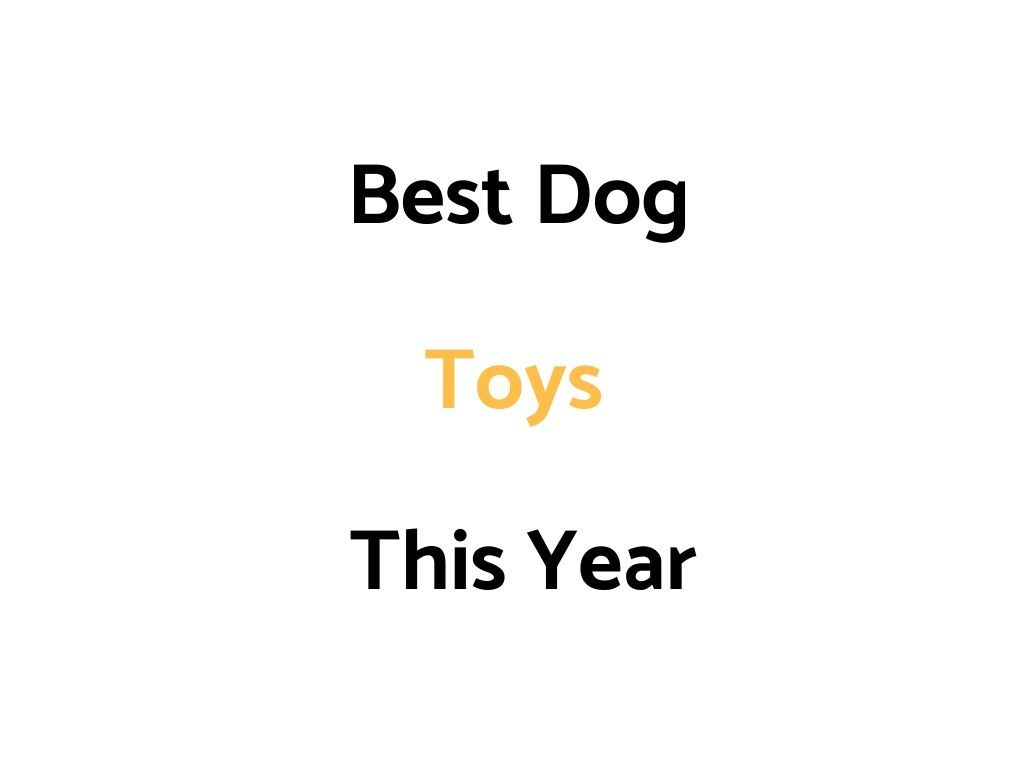 Best Dog Toys 2021 Best Dog Toys For Dogs & Puppies In 2020/2021   The Daily Shep in