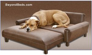 The Max Comfort Amp Reg Modern Dog Sofa Is Designed Especially For Larger Dogs To Give Them A Solid Lounging Pl Dog Sofa Bed Dog Bed Dog Bed Luxury