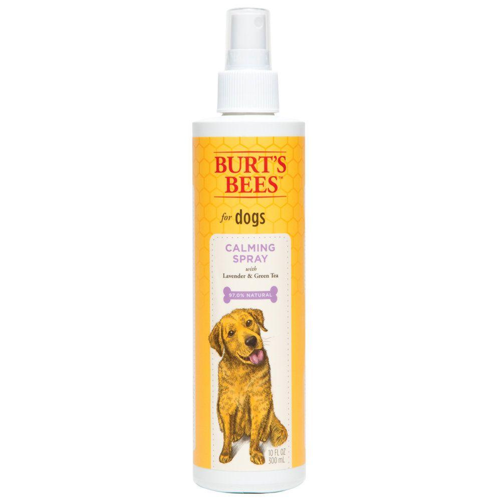 High Resolution Image Dog Shampoo Dog Grooming Supplies Best Dog Shampoo