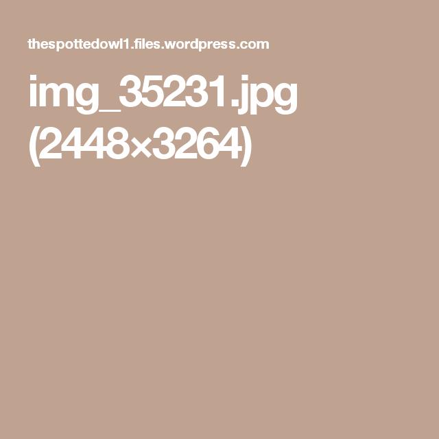 img_35231.jpg (2448×3264)