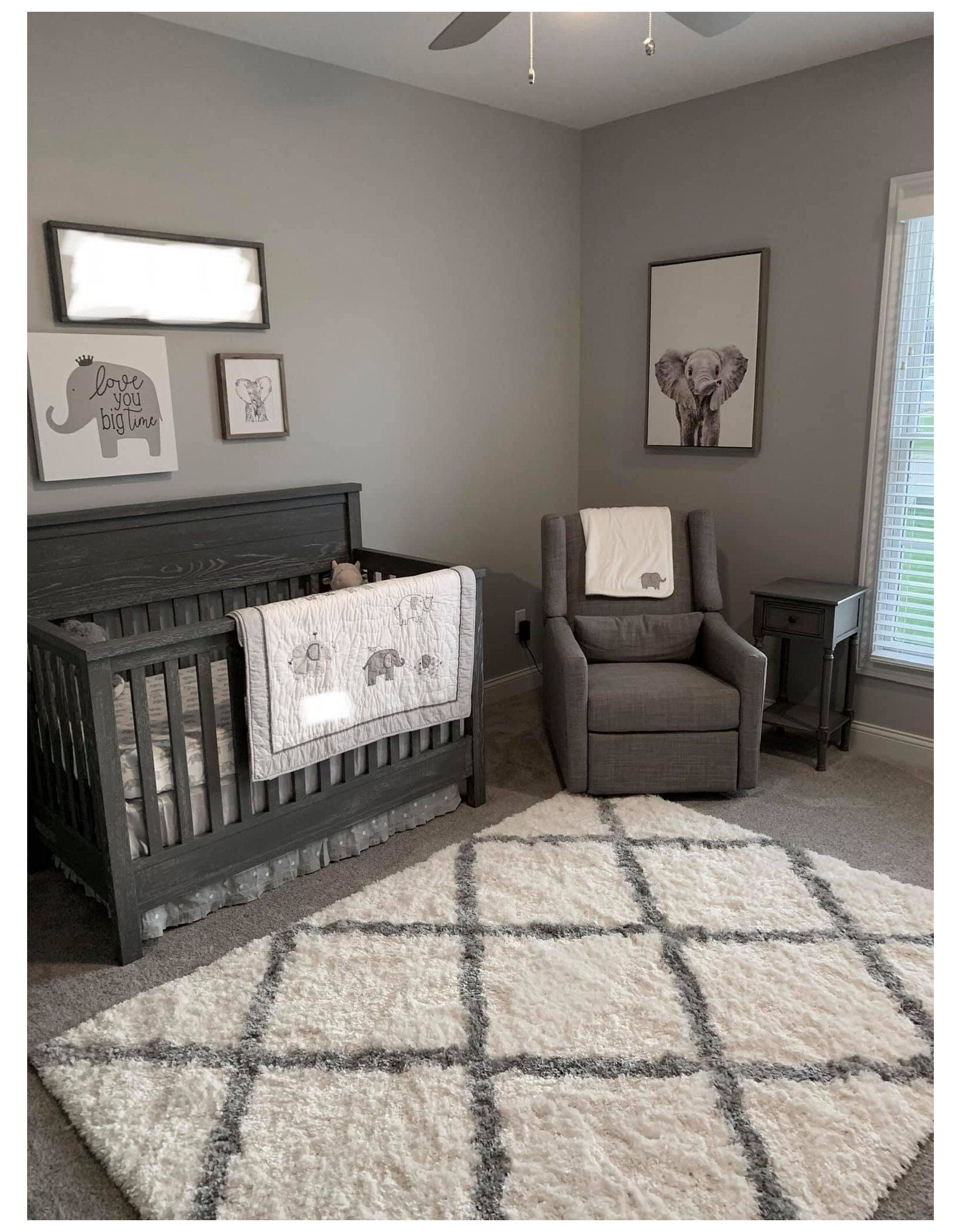 Baby Boys Elephant Themed Nursery