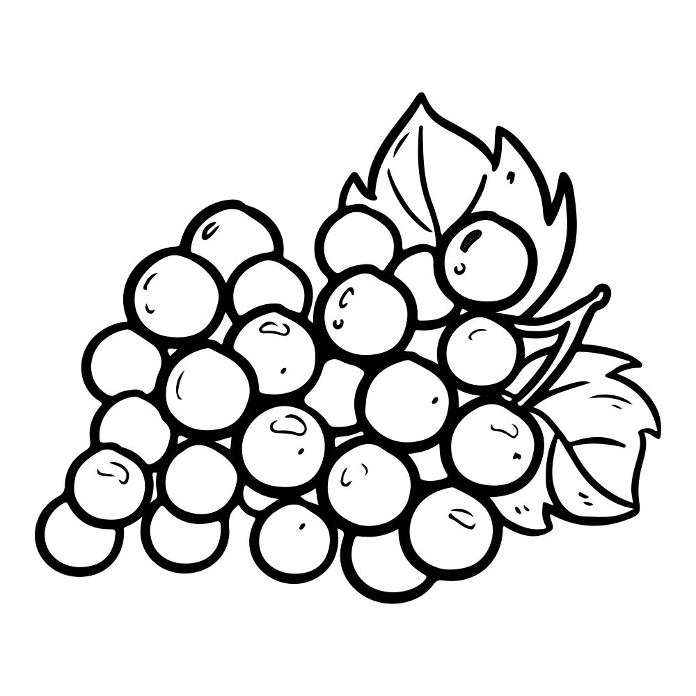 Grapes Coloring Pages | Fruit coloring pages, Coloring pages for ...