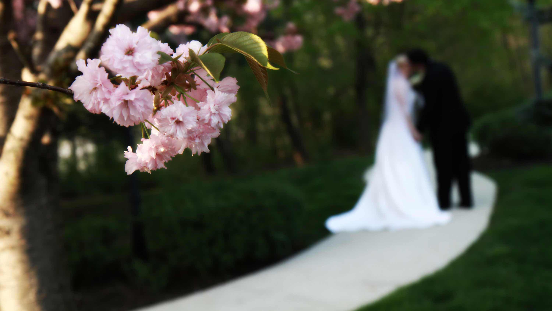 Montgomery County Wedding Venues County wedding, Pa