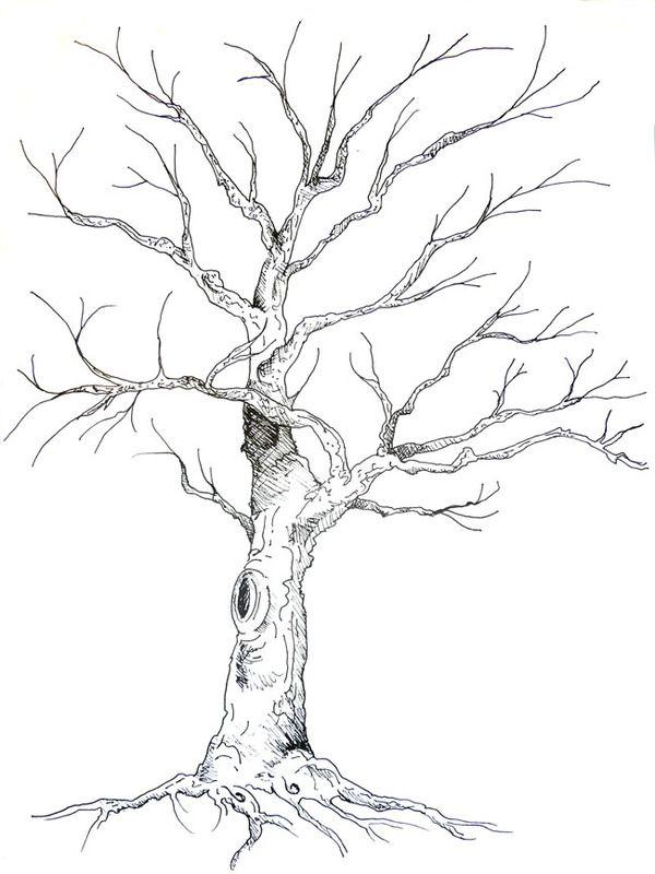 Guestbook Tree Illustration By Anne Herbst Via Behance Malen In