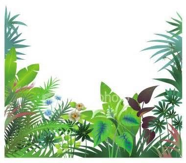 page borders jungle clip art yahoo image search results jackie rh pinterest com jungle clip art border jungle clipart