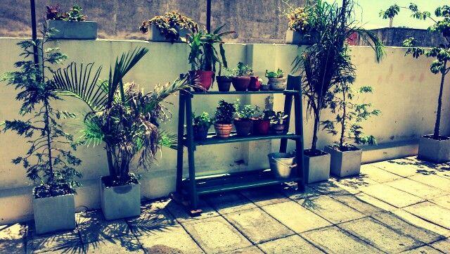 Terraza verde/Green terrace