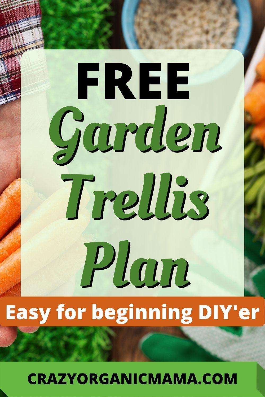 Free Garden Trellis Plan In 2020 Healthy Garden How To Plan Backyard Plants