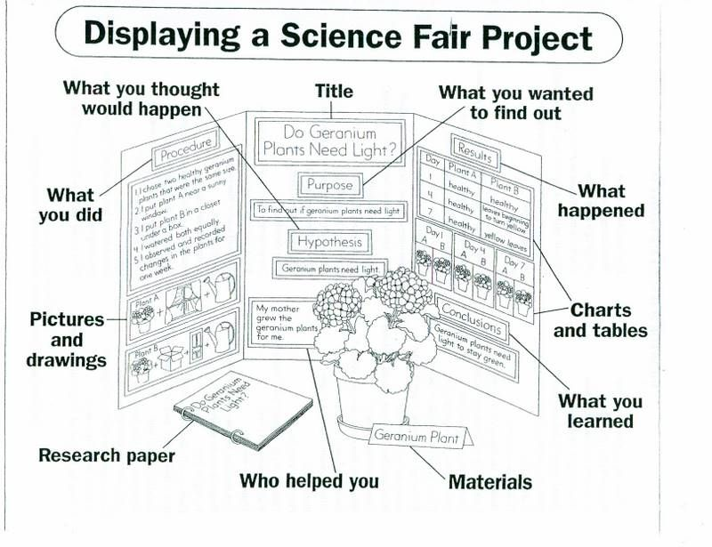 science board layout | cas: science explorations | science fair, Powerpoint templates