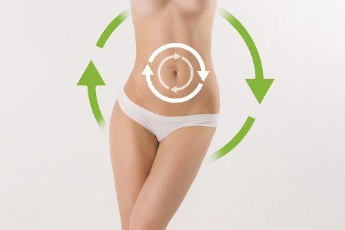 Tips para Tipos de metabolismo
